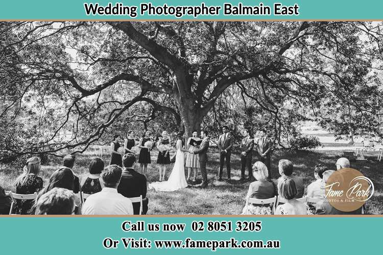 Wedding ceremony under the big tree photo Balmain East NSW 2041