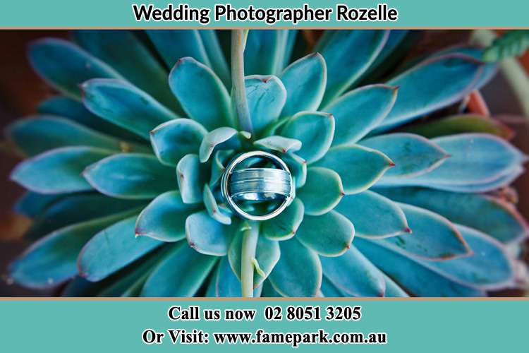 Photo of the wedding ring design at the top of the plant Rozelle NSW 2039